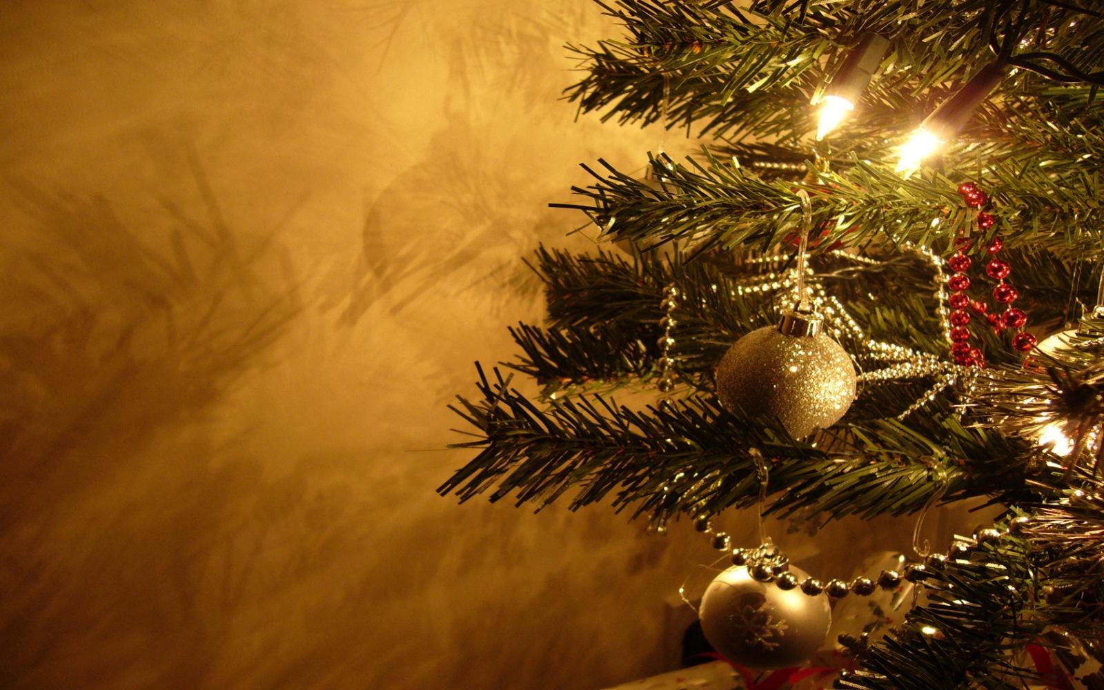 wesołych świąt bożego narodzenia i szczęśliwego nowego roku życzy zespół poradni psychologiczno - pedagogicznej nr 21 w warszawie!