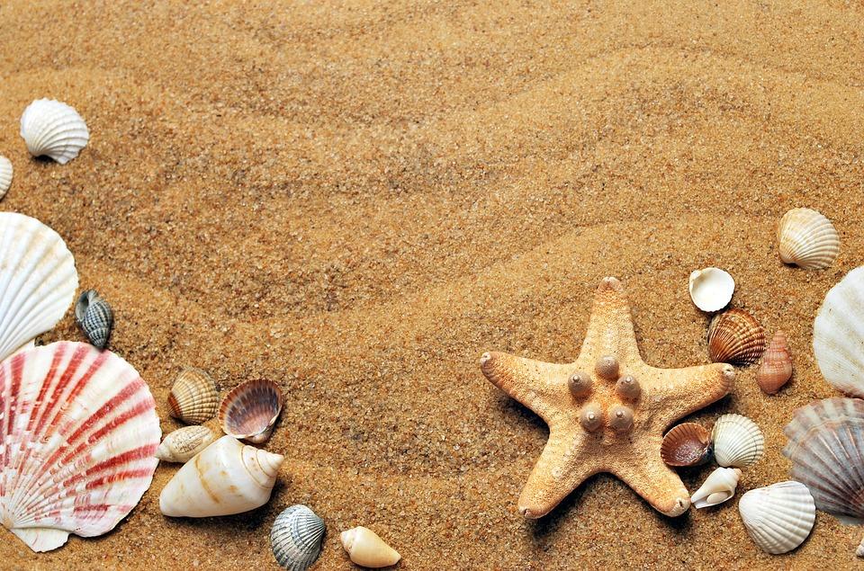 Dzieciom, Młodzieży, rodzicom, nauczycielom i wszystkim naszym współpracownikom życzymy wspaniałych i bezpiecznych wakacji!!!
